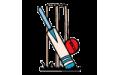 Cricket Colour