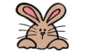 Bunny Colour